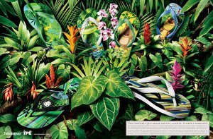 flip flops for endangered species